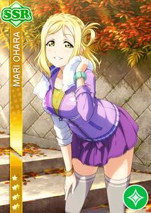 mary-ssr-gazou-cheer