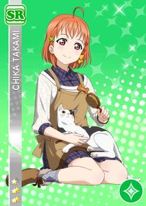 chika-shokugyou-sr-gazou1