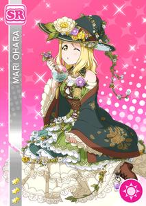 mari-shokugyou-sr-gazou2