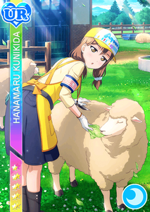 hanamaru-ur-animal-1